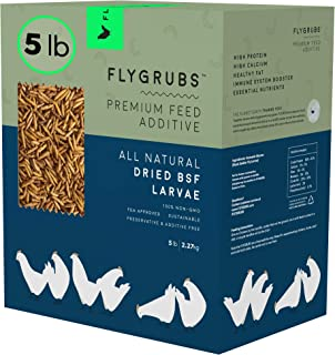 FLYGRUBS Superior to Dried Mealworms for Chickens (5 lbs) – Non-GMO – 85X..