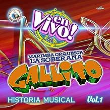 Historia Musical Vol. 1. Música de Guatemala para los Latinos (En Vivo)