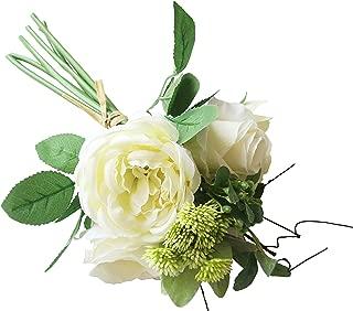 white knight hydrangea