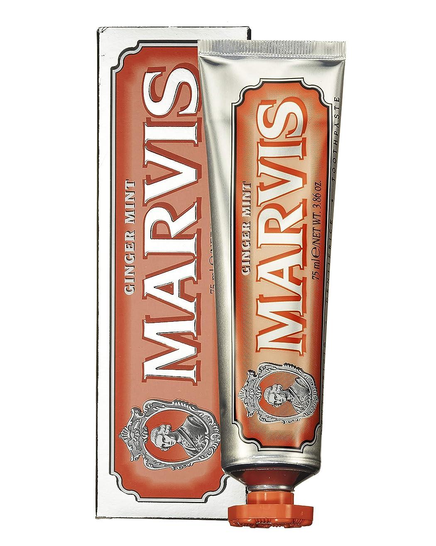 飢え素晴らしさ福祉MARVIS(マービス) ジンジャー?ミント(歯みがき粉) 75ml