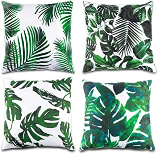 Best palm leaves images Reviews