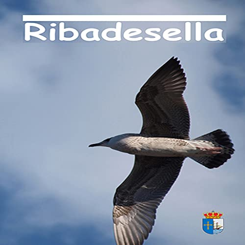 Visita Ribadesella