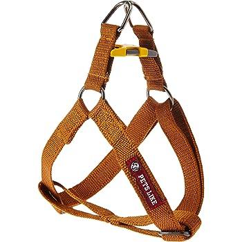 PetsLike Regular Harness, Small (Gold)