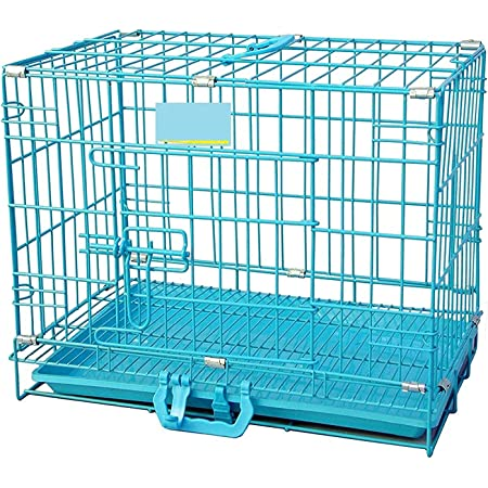 Midwest Dog Cage/Crate/Kennel Double Door Heavy Duty Folding Metal for Medium Size Dogs and Adults 30 Inch