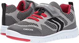 Geox Kids - Jr Xunday Boy 5 (Little Kid/Big Kid)