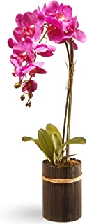 National Tree 23 Inch Purple Orchid Flower with Round Bamboo Vase (RAS-GFA5605-1)