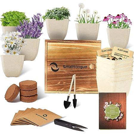 Smalltongue Indoor Herb Garden Kit-Herbal Tea Garden Kits, 6 Types of Herb Herbal Tea Seeds,Herbal Tea Growing Starter Kit for Beginner, Adult, Kitchen, Balcony, Window Sill