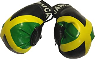 Flag Mini Small Boxing Gloves to Hang Over Car Automobile Mirror - Americas
