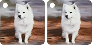 3dRose American Eskimo Toy Dog - Key Chains, 2.25 x 4.5 inches, set of 2 (kc_4178_1)
