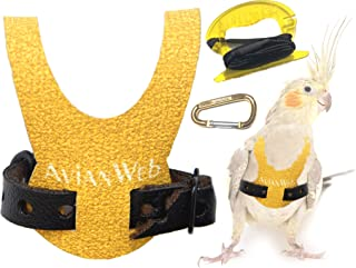 Avianweb Dazzling Sun Bird Harness