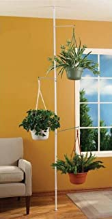 tension rod hanging plants