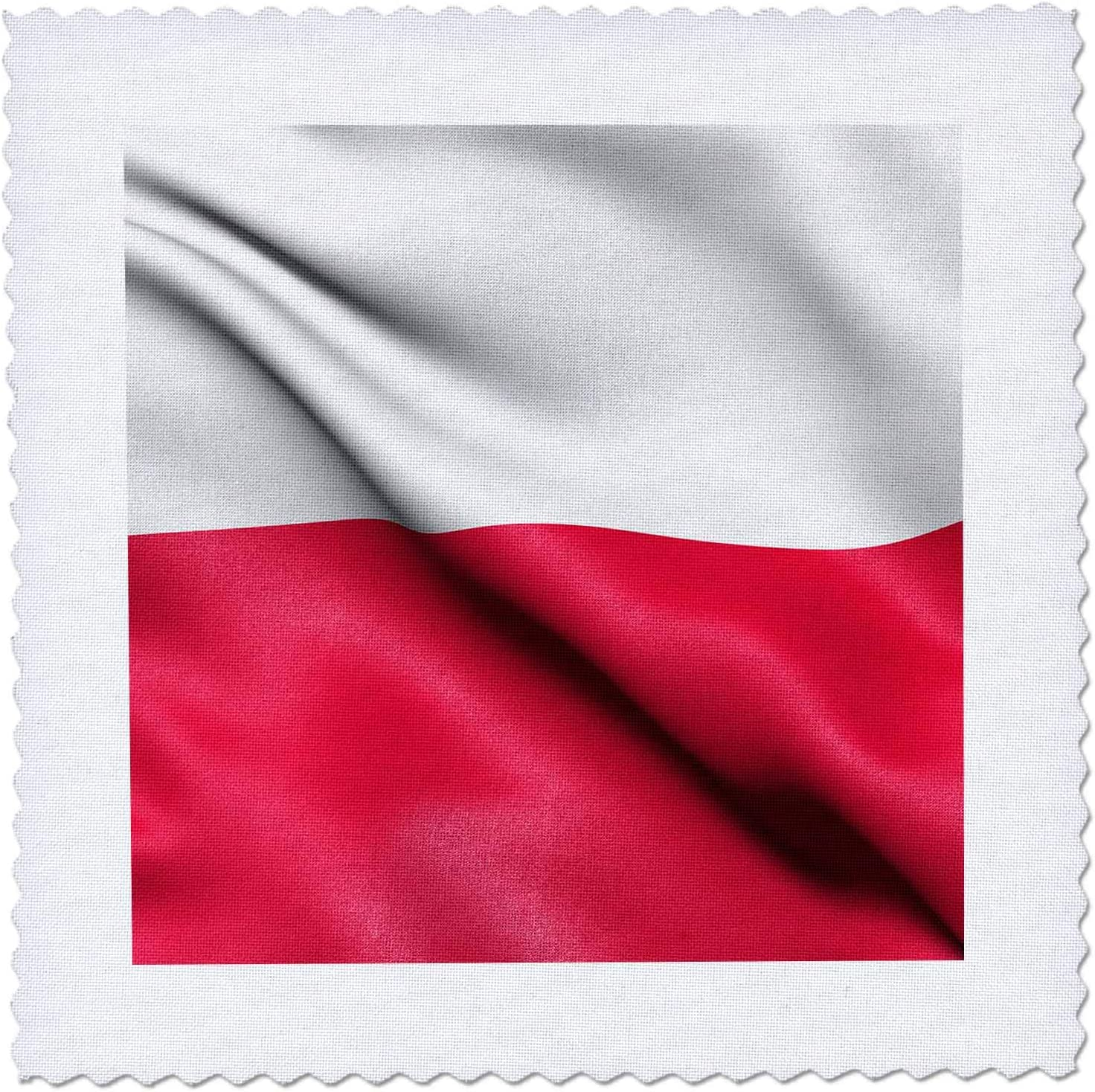 3dRose CR Media Ranking TOP13 - Illustrations Flag w of Poland waving Colorado Springs Mall the in
