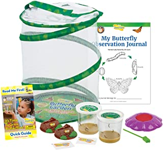 Insect Lore Butterfly Garden: Original Habitat and Two Live Cups of Caterpillars with STEM Butterfly Journal – Life Scienc...