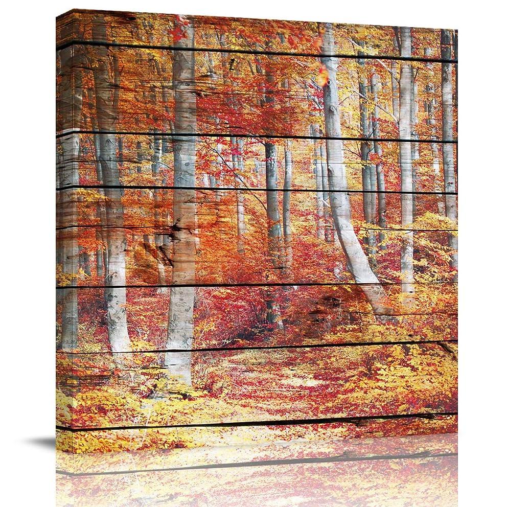 フラフープ時危険を冒します壁装飾鉄パイプラックロフトスタイルレトロインダストリアルスタイル棚本棚CD仕上げ鉄パーティション (Color : D)