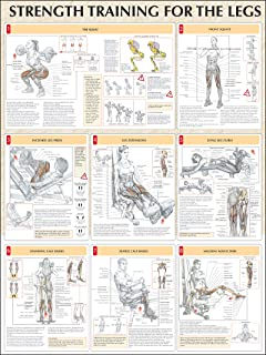 Strength Training Anatomy: Strength Training for the Legs Poster
