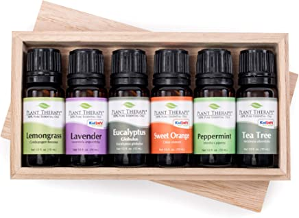 Plant Therapy Top 6 Essential Oils Sampler Set   Lavender, Eucalyptus, Others In Wood Box   100% Pure   10 mL (1/3 oz)