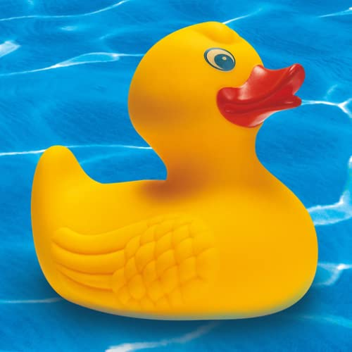 duck sounds Rubber Duck Sound - Squeaky Toy Sounds - Rubber Duckie - Rubber Chicken