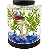 Top 10 Best Aquariums & Fish Bowls of 2020