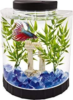 Best fish bowl led light Reviews