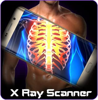 Best x ray display Reviews