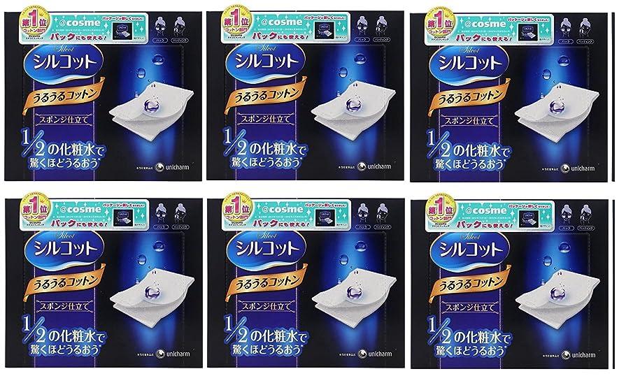 師匠メナジェリー団結する【セット品】シルコット うるうるスポンジ仕立て(40枚入)x6