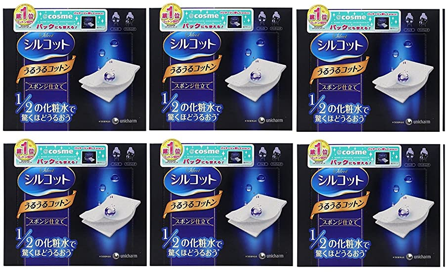 グロー死傷者復活する【セット品】シルコット うるうるスポンジ仕立て(40枚入)x6