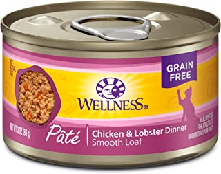 Wellness Complete Health Natural Grain Free Wet Canned Cat Food Pate Recipe Chicken & Lobster Pate