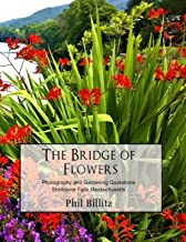 The Bridge of Flowers (Shelburne Falls Massachusetts)