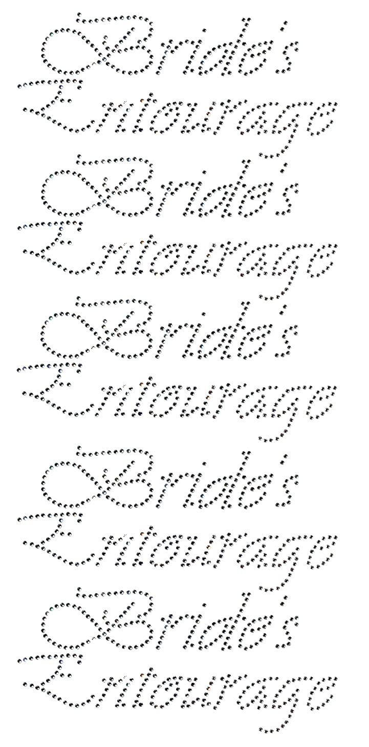 Bride's Entourage Clear Rhinestone Iron On Hotfix Transfer Decal Bling DIY   Each 8.5x4 - Lot of 5