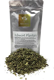 Ribwort Plantain - A Tea From The Leaves Is Used As A Highly Effective Cough Medicine - Ingredients: 100% Ribwort Plantain (Plantago Lanceolata) - Kosher, Halal, Organic - Net Weight: 1.05oz / 30g