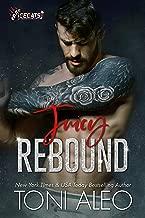 Juicy Rebound (IceCats Book 1)