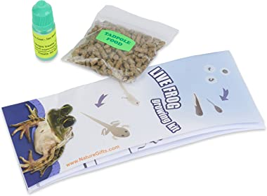 Nature Gift Store 1 Tadpole Plus Food and Water Treatment Bundle