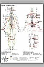 24''x36'' Poster - Chinese or Human Body Meridians for Martial Arts & Medicine