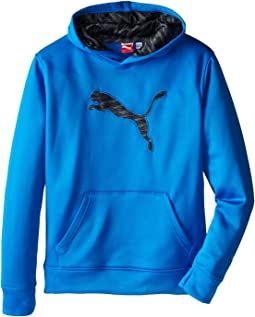 Puma Kids Big Cat Hoodie (Big Kids)