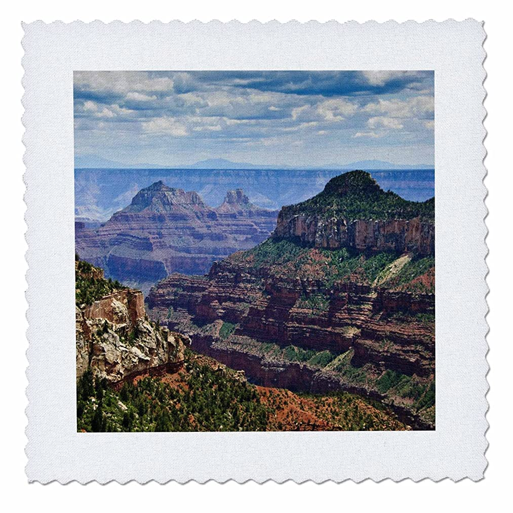 3dRose qs_88036_1 North Rim, Grand Canyon National Park, AZ - US03 MWI0000 - Mark Williford - Quilt Square, 10 by 10-Inch