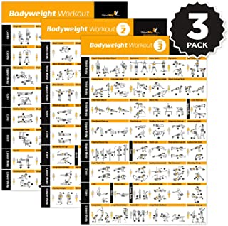 Bodyweight Exercise Poster - Total Body Workout - Personal Trainer Fitness Program - Home Gym Poster - Tones Core, Abs, Le...