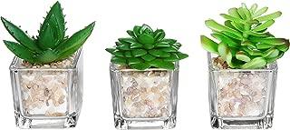 Small Glass Cube Artificial Plant Modern Home Decor/Faux Succulent Planter Pots, Set of 3 (Assortment 1)
