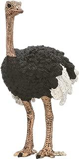 Schleich Ostrich Figurine Toy Figure