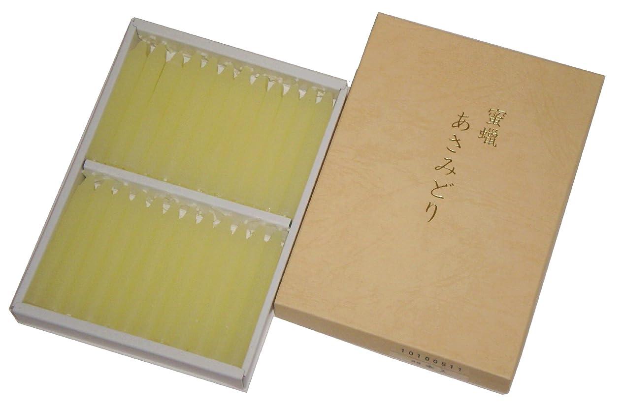 欠乏話す圧縮鳥居のローソク 蜜蝋 あさみどり 太ダルマ48本入 印刷箱 #100511