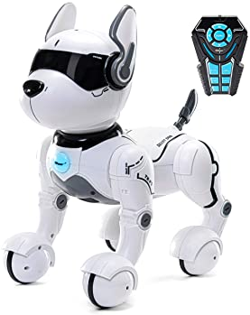 Remote Control Robot Dog Toy, Robots for kids, Rc Dog Robot Toys for Kids 2,3,4,5,6,7,8,9,10 year olds and up, smart ...