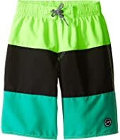 Speedo Kids - Blocked Volley Shorts (Little Kids/Big Kids)