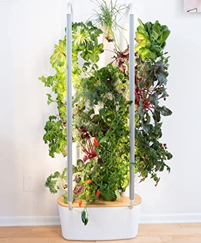 Gardyn Home 30-Plant Indoor Smart Garden - WiFi Integrated Vertical Gardening Kit with AI-Based App - Best Invention ...