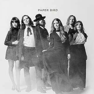 paper bird music