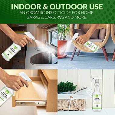 NATURAL OUST Peppermint Oil Spider Repellent Spray - Eco Friendly Indoor Outdoor - Effective Spider Control