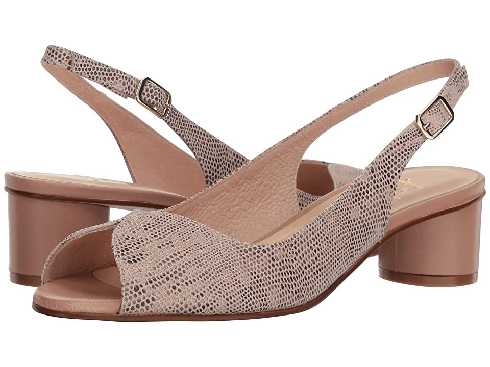 French Sole Borderline (Nude Snake Print) Women