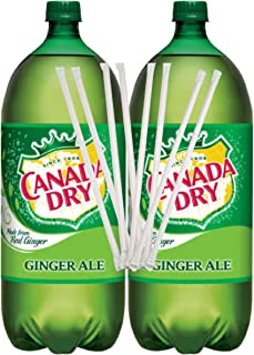 Canada Dry Ginger Ale and Lemonade 2 L bottle (Pack of 2) with Drinking Draws