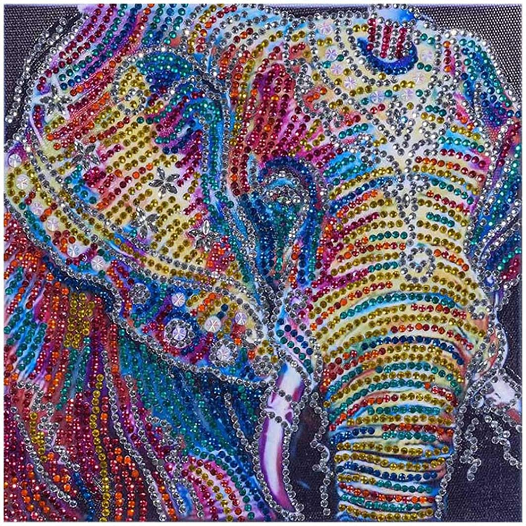 DIY 5D Diamond Painting Kits for Adults Kids by Number Special-Shaped Rhinestone Embroidery Cross Stitch Kit Home Decor Craft