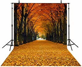 Funnytree 6x8ft Durable Fabric Maple Leaves Photography Backdrop Autumn Fallen Yellow Tunnel Scenery Natural Season Background Fall Tree Street Road Photo Studio Props Photobooth Poster Photoshoot