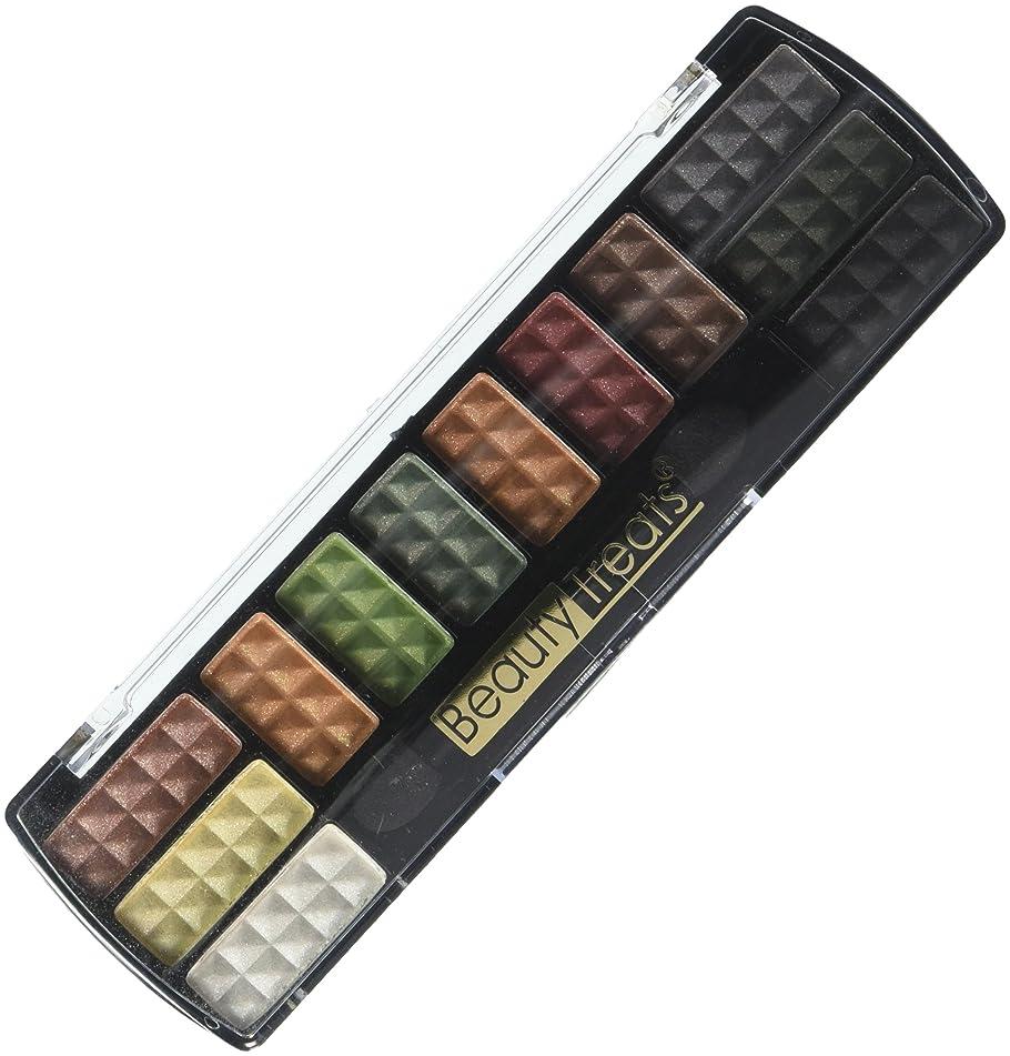 Professional Makeup Cosmetic Eyeshadow 12 Colors Eye Shadow Palette Set No.2