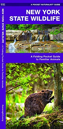New York State Wildlife: An Introduction To Familiar Species